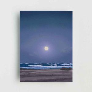 Nocturnal Beach Poster